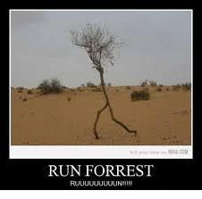 Run Forrest Run Meme - kill your time on 9gagcom run forrest ruuuuuuuuun 9gag meme on me me