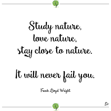 frank lloyd wright font free 31 most beautiful and inspiring nature quotes spirit button