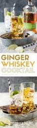 1075 best cocktail and drink recipes images on pinterest