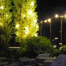 light up your miniature garden with festive outdoor mini