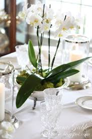 orchid centerpiece china orchids and open house stonegable