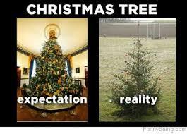 Christmas Tree Meme - top 90 funny christmas memes