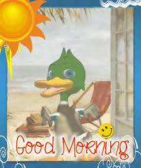 best 25 morning greeting cards ideas on