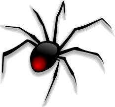 cartoon image spider
