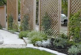 pictures of vines on trellius freestanding lattice screens with