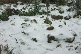The Rock Garden Torquay Park Rock Garden In The Snow Derek Geograph