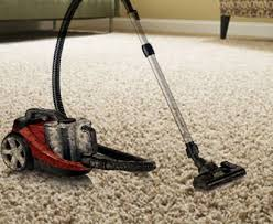 How Long Do Fleas Live In Carpet How To Get Rid Of Fleas In The House And Outside Completely Naturally