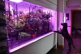 grow journal grow videos indoor grow journal