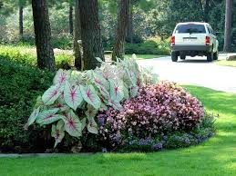 best 25 front flower beds ideas on pinterest borders for flower