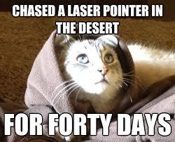 Laser Meme - laser cat meme cat best of the funny meme