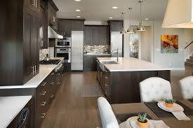 cuisine gris et cuisine gris et blanc photos de design d intérieur et décoration
