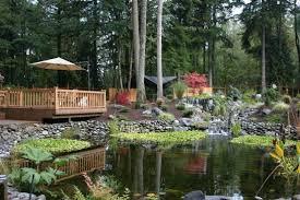 Backyard Pond Building 67 Cool Backyard Pond Design Ideas Digsdigs