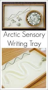 arctic animal sensory writing tray