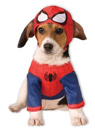 Halloween Costumes Large Dogs Large Dog Halloween Costumes Super Hero