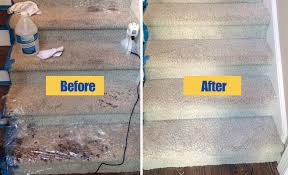 Area Rug Cleaning Service Carpet Cleaning Services Forest Raleigh Chapel Hill And