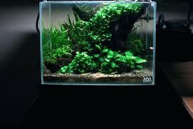 national geographic aquarium light aquarium light for plants national geographic led aquarium light