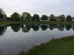 Retention Pond In Backyard Pond In My Backyard Fishing Reports Bass Fishing Forums