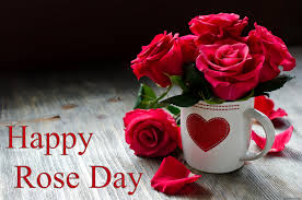 whatsapp wallpaper red happy rose day 2018 images whatsapp dp wallpapers 7th feb pics fb covers