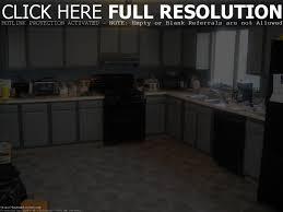 Kitchen Cabinet Shops Black Kitchen Cabinet Ideas Baytownkitchen Wonderful Design With