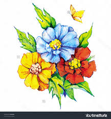 drawing flowers colored pencils pencil drawings of flowers and