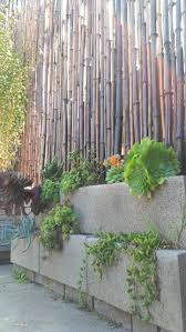 landscape block adhesive nice cinder block planters and bamboo fence landscape dreams and