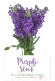 wedding flowers purple complete guide to purple wedding flowers purple flower names pics