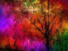modern trees brian gaynor photography