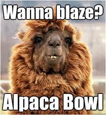 Alpaca Meme - alpaca meme generator 28 images alpaca my bags meme generator