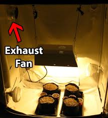intake fan for grow tent how to set up a grow tent for cannabis grow weed easy