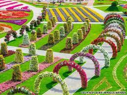 flower gardens u2013 home design and decorating