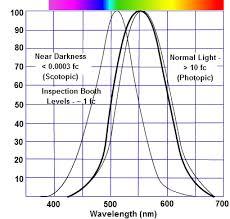 Eyes Are Sensitive To Light Eye U0027s Response To Light