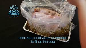 turkey brining bag foods turkey brining guide