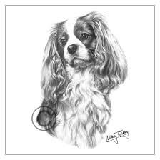 mike sibley design cavalier king charles greeting card exhibitor