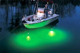 hydro glow fishing lights now available hydro glow fish lights catch the night fishing