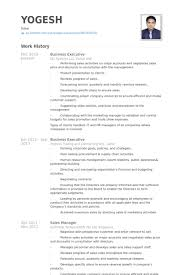 Business Management Resume Sample by Business Executive Resume Samples Visualcv Resume Samples Database