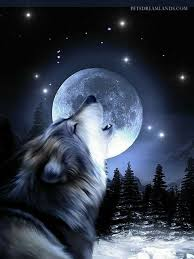 wolf moon wolves wolf moon wolf and moon