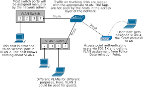 2 virtual lans vlans