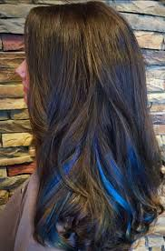 pintrest hair the 25 best blue hair highlights ideas on pinterest brown hair