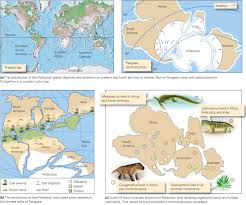 North America Ice Age Map by Wegener U0027s Evidence For Continental Drift Learning Geology