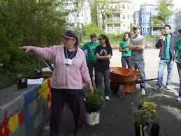 a guide to volunteering in boston cbs boston