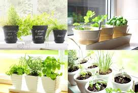 herb garden ideas outdoor herb garden ideas in innovative ways