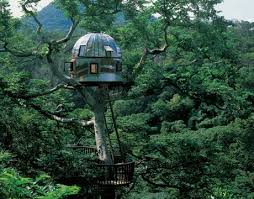 three house tree house pictures amazing treehouses
