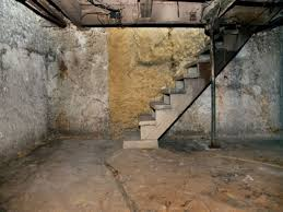 How To Stop Mold In Basement by How To Get Rid Of Musty Smell In Basement