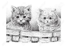 two cute kittens in a basket version of my original pen