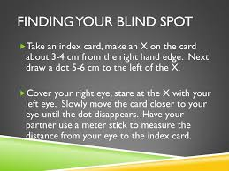 Finding Your Blind Spot In Your Eye The Electromagnetic Spectrum U0026 Light Chapter 18 What Types Of