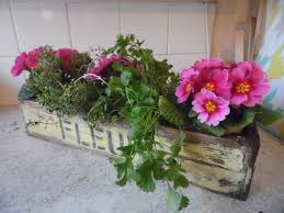 Wooden Window Flower Boxes - window box for flower planters containers window ledge pale