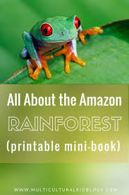 Amazon Rainforest Map 130 Best Amazon Rainforest Images On Pinterest Amazon Rainforest