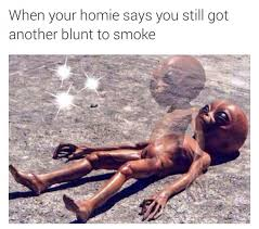 Stoned Alien Meme - aliens went to california for the same reason we all go good weed
