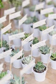 plant wedding favors succulent wedding favors succulents for sale succulent favors