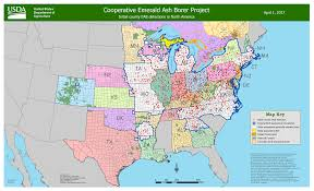 Mi County Map Updated Eab Detection Map Bygl